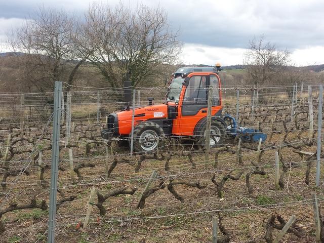 Tracteur holder l770 au travail dans les vignes sarl for Travailler dans les espaces verts